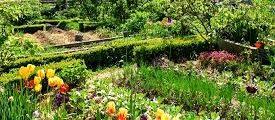 Jardin - Permaculture