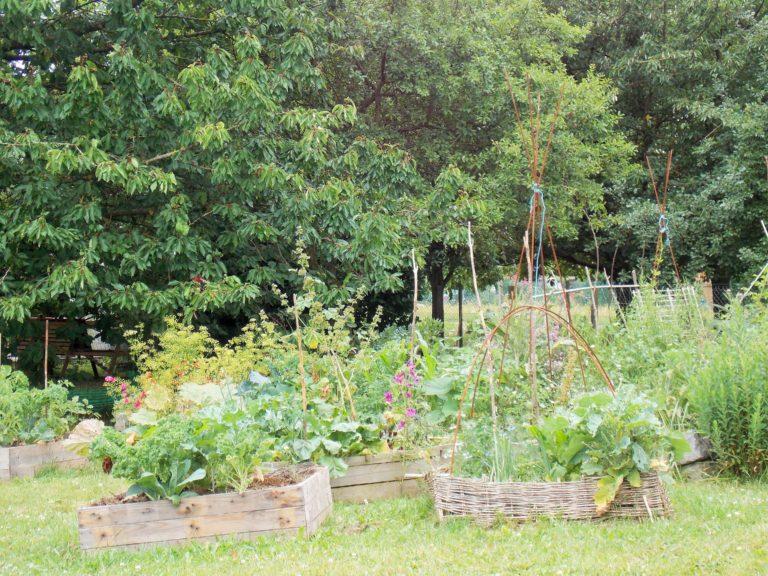Ecolo-bio-nature - Jardin