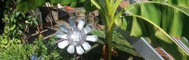 Le jardin de mana et gladys