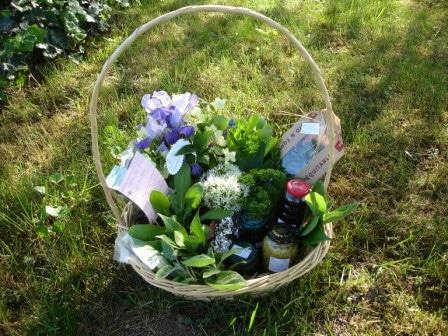 Art floral - Plante à fleurs