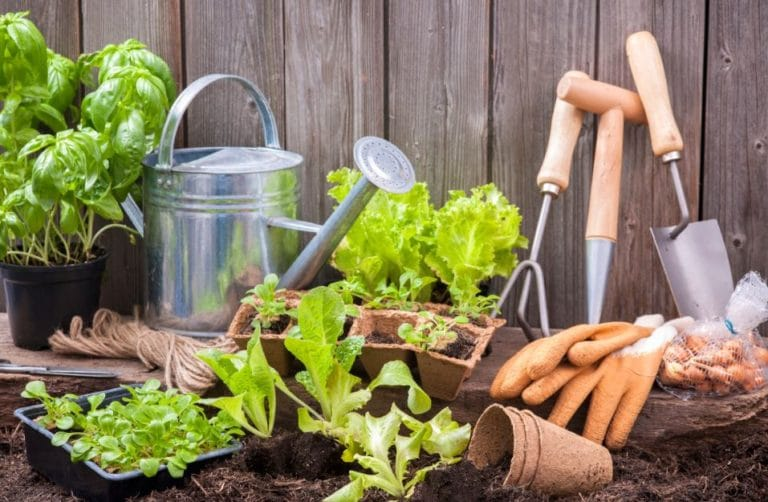 Jardinage - Outil de jardin