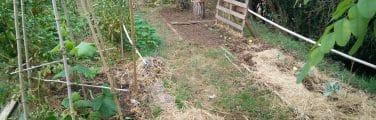 Arrière-cour - Compost