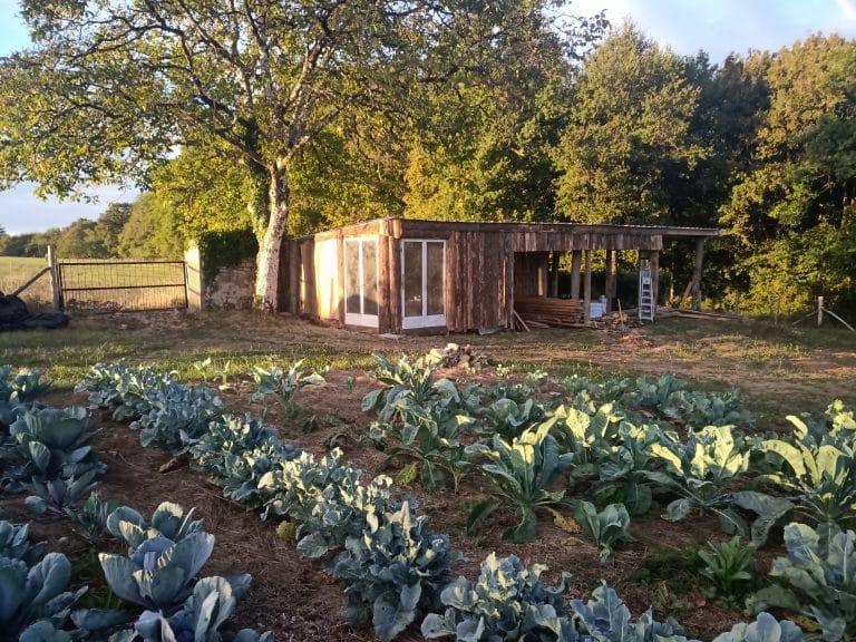 Agriculture - Plantation
