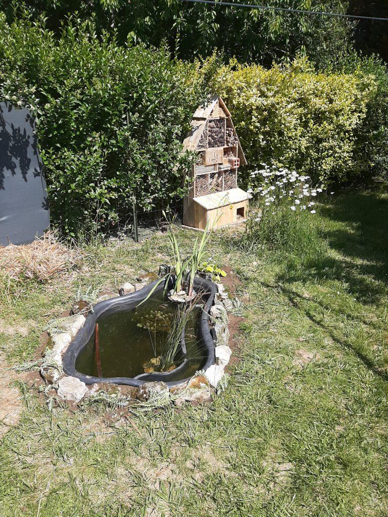 Ressources en eau - Communauté végétale