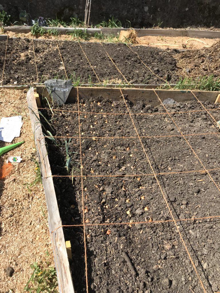 Sol - Compost