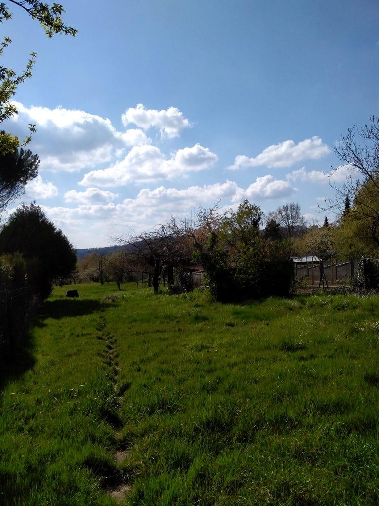Parc d'État de Podocarpus - se garer