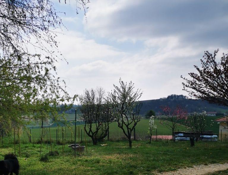Terrain - Zone rurale